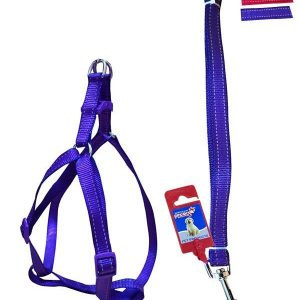 """Fekrix 2 Lines Dog Leash And Harness 10mm 48"""" 12-16 Inch"""