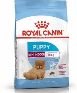 Royal Canin Mini Indoor Adult