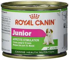 Royal Canin mini junior dog can